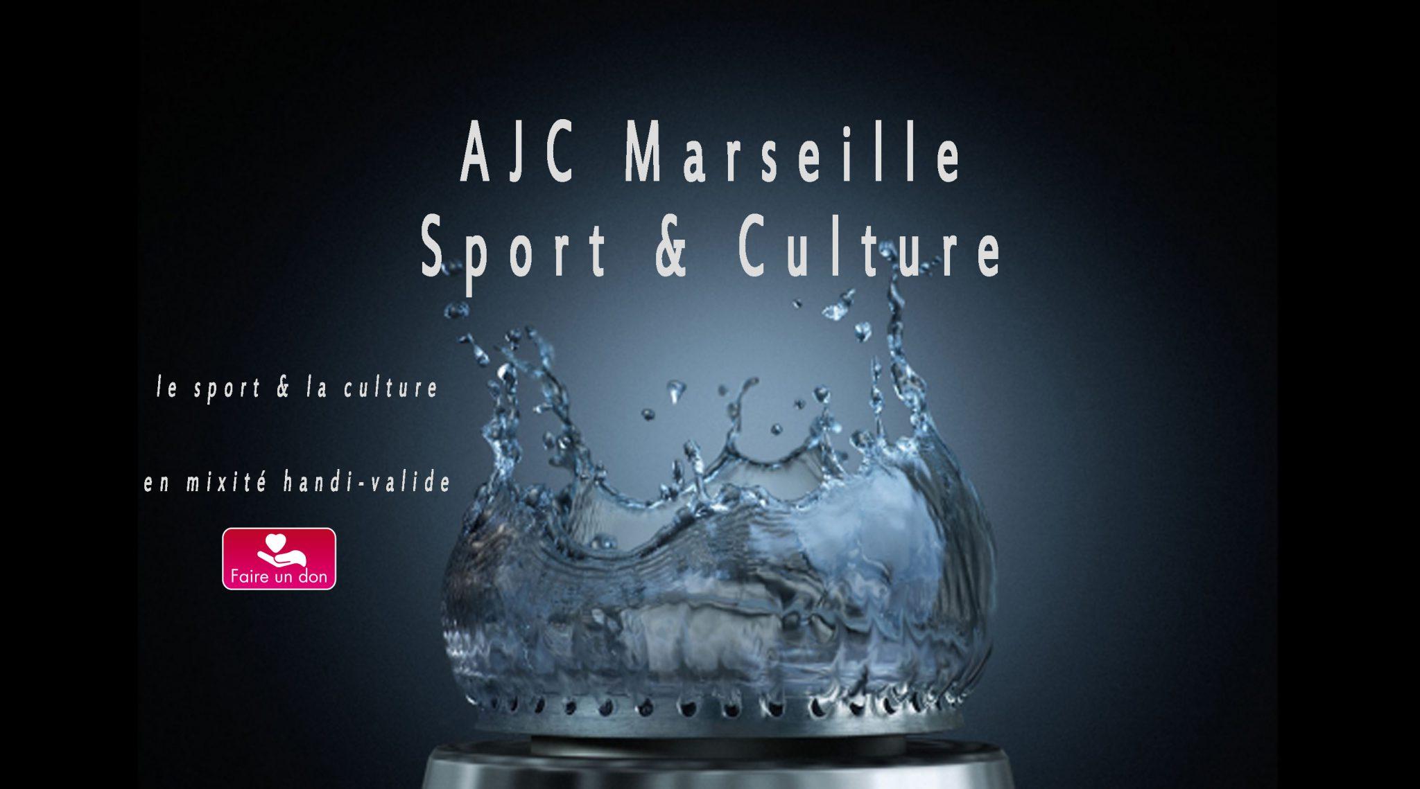 ajcmarseille sport  u0026 culture  u22c6 performeur social handi valide
